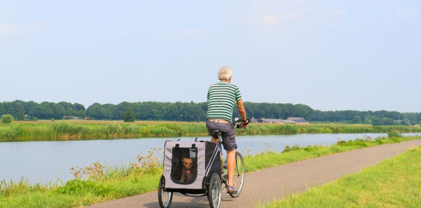 Want to Get a Pet Bicycle Trailer? Here Are a Few Things to Know